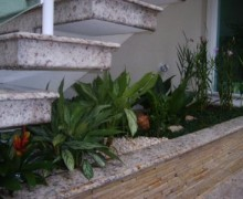 jardim na escada 2