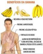 tipos de banana 2