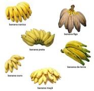tipos de banana 3