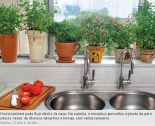horta em casa 4