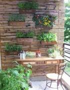 horta em casa 5