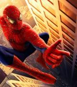 homem aranha 8
