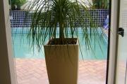 vasos para jardins 5