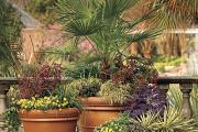 vasos para jardins 6