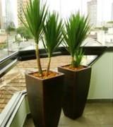 vasos para plantas 6