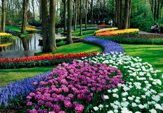 flores jardim externo:Jardim com flores – dicas e fotos dos mais lindos – Revista das