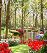jardim com flores 3