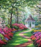 jardim com flores 8