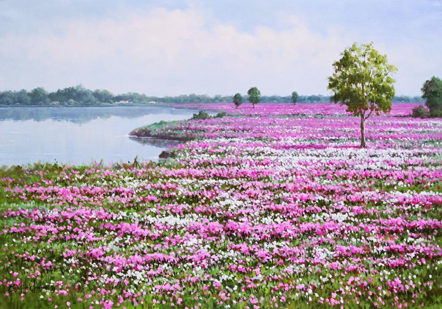 campo de flores a beira do rio